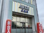 取材日:7/22 双龍 in メガガイア座間店