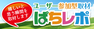 ぱちレポ告知