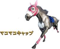 G1優駿倶楽部3のマコマコキャップ