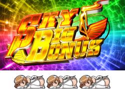 スカイガールズ~ゼロノツバサ~のSKY BIG BONUSの配当