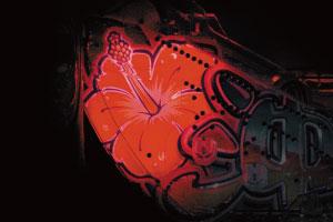 パチンコPスーパー海物語 IN 沖縄5の盤面ハイビスカスの画像