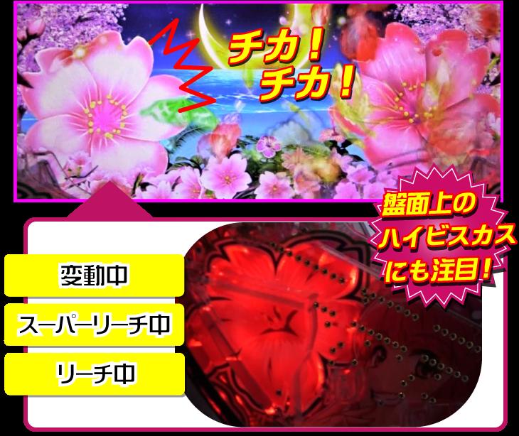 パチンコPスーパー海物語 IN 沖縄5 桜ver.199の桜ビスカス演出の画像