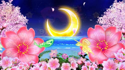 パチンコPスーパー海物語 IN 沖縄5 桜ver.319の夜の画像
