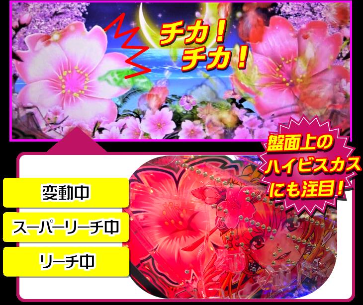 パチンコPスーパー海物語 IN 沖縄5 桜ver.319の桜ビスカス演出の画像