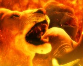 パチンコP野生の王国GO M-T YT800の動物カットイン演出画像