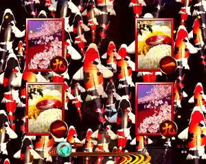 パチンコPAフィーバー真花月2 Light Ver.の鯉昇り予告の画像
