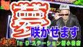 決戦#19【ドリームハナハナ/ハナビ】すがしょー×D'ステーション新小岩店